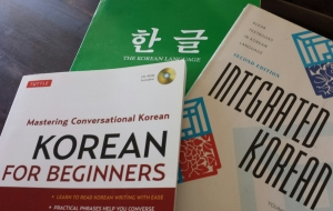 My Korean study books